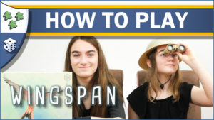 Nights Around a Table - How to Play Wingspan board game video thumbnail